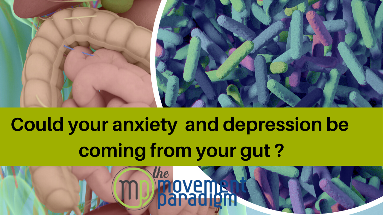 COULD YOUR ANXIETY and DEPRESSION BE COMING FROM YOUR GUT? | SIBO