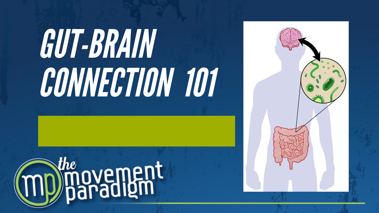 GUT-BRAIN CONNECTION 101