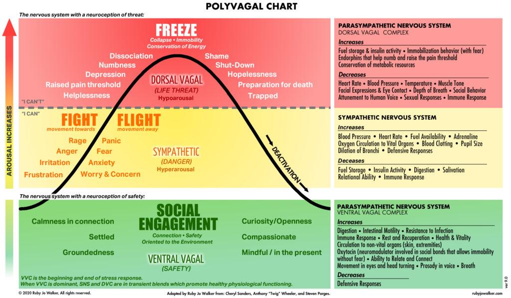 polyvygal chart